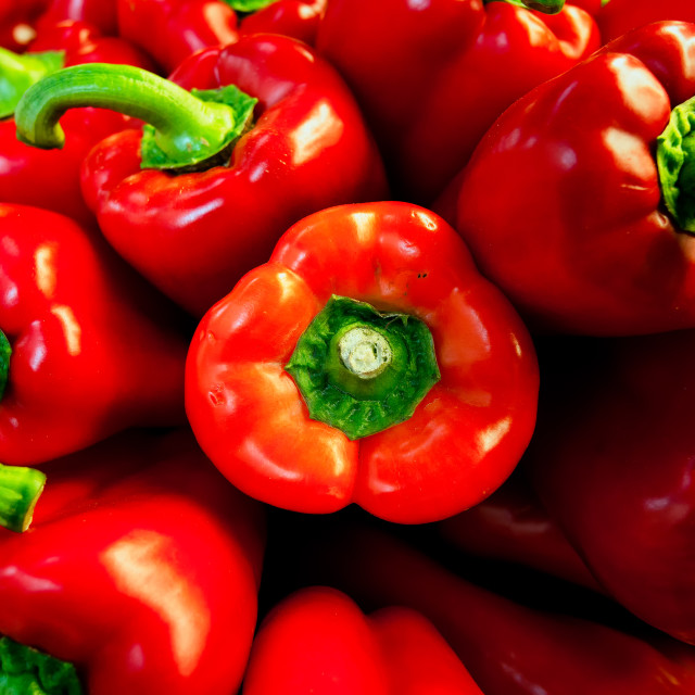 """""""Red Peppers."""" stock image"""