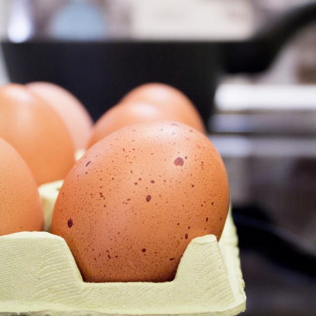 """Brown eggs on carton."" stock image"