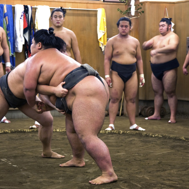 """Sumo Stable Practice, Tokyo"" stock image"