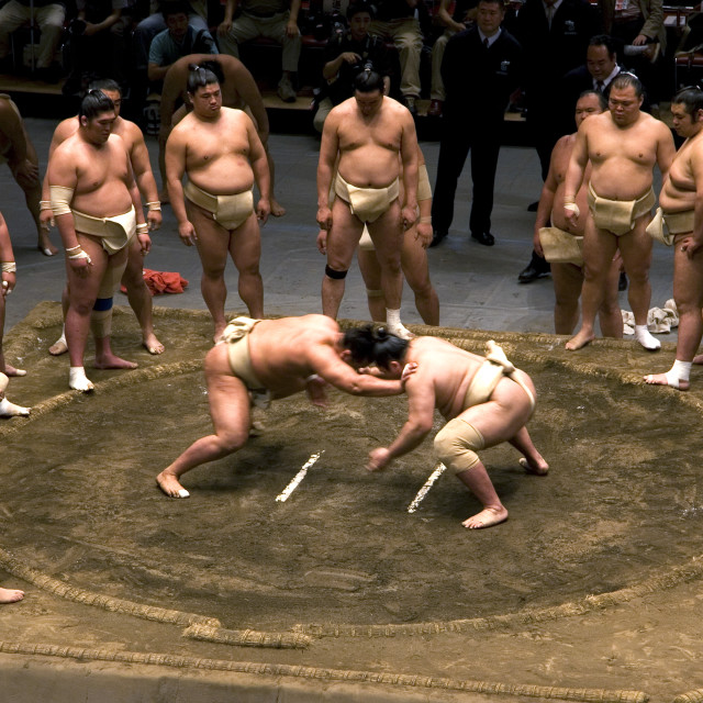 """Sumo Tryouts at Kokugikan, Tokyo"" stock image"