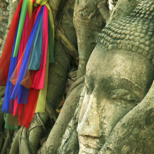 """Wat Mahathat Embedded Face, Ayutthya"" stock image"