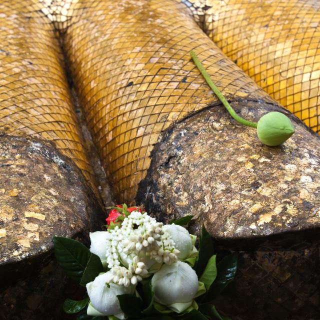 """""""Wat Intharavihan"""" stock image"""