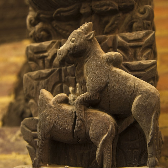 """Kama Sutra Animals Shiva Parvati Temple"" stock image"