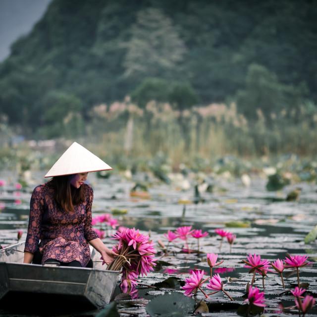 """Vietnamese beauty at Yen stream"" stock image"