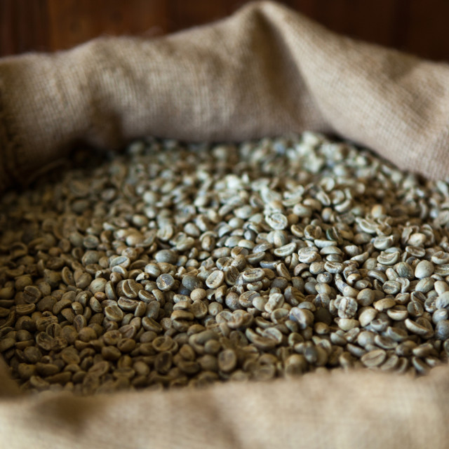 """Raw Arabica Coffee Beans"" stock image"