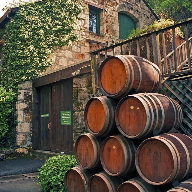 """Buena Vista Winery"" stock image"