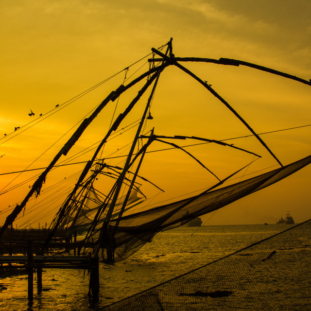 """Kochi Fishing Nets Sunset"" stock image"