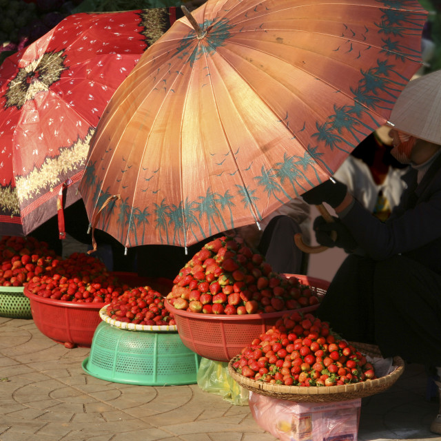 """Strawberries at Dalat Market"" stock image"