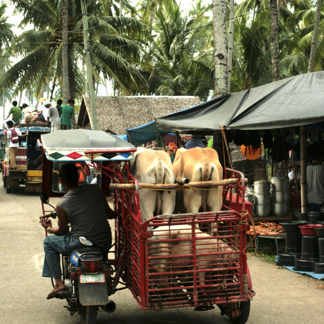 """""""Malatapay Market"""" stock image"""