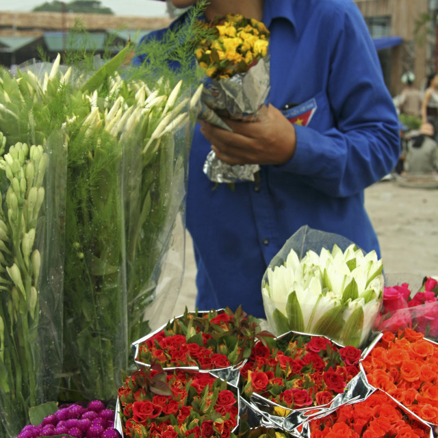 """""""Hanoi Flower Market"""" stock image"""
