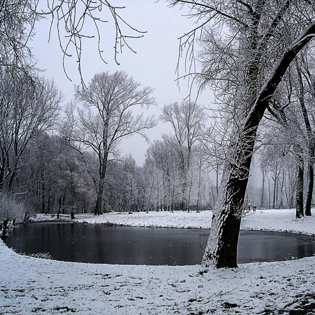 """Winter Long"" stock image"