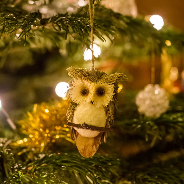 """Christmas Tree Decorations - Owl"" stock image"