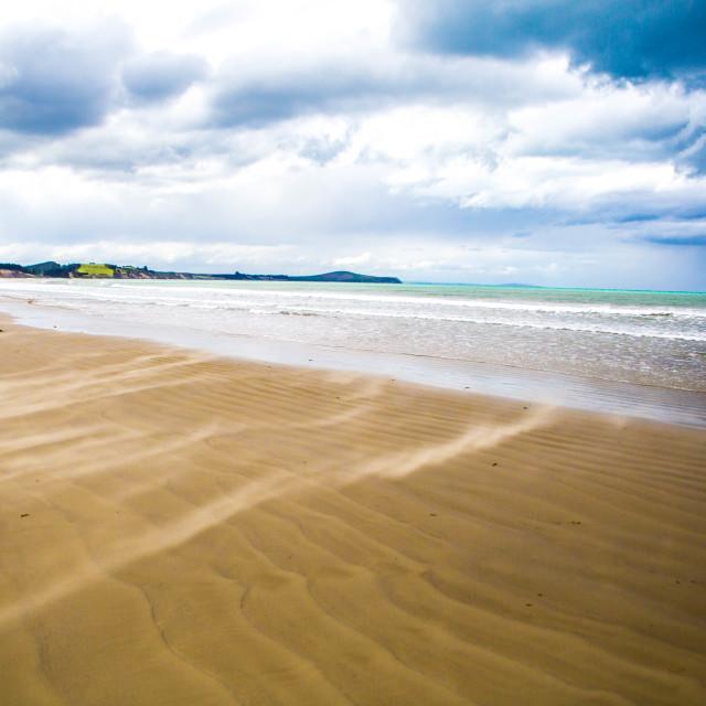 """Beach Beauty"" stock image"