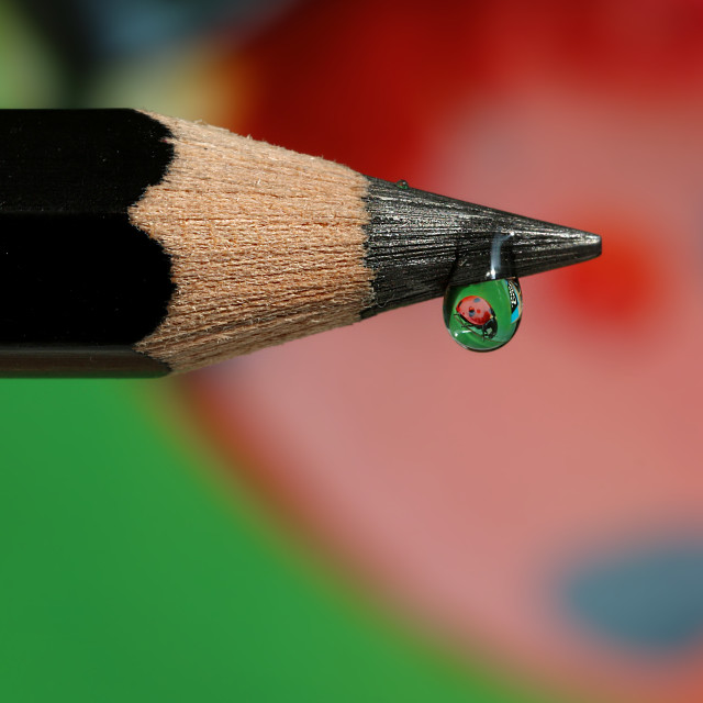 """Droplet on a pencil"" stock image"