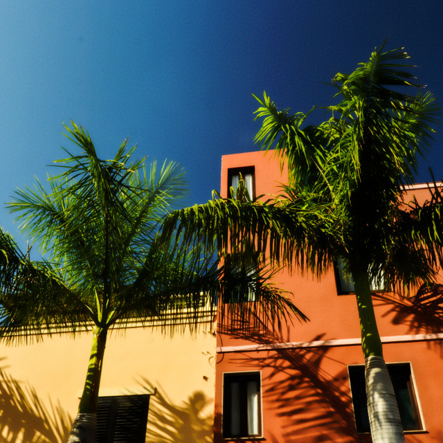 """""""Colorfull (Canarian) houses"""" stock image"""