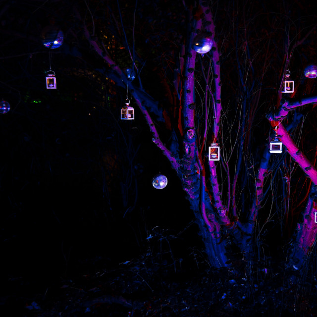 """Magical midnight lanterns"" stock image"