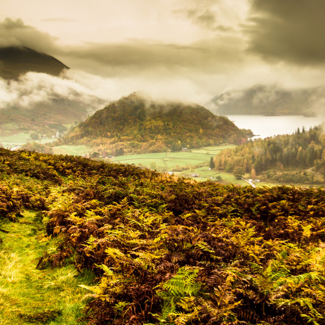 """Autumn in the Lake District"" stock image"