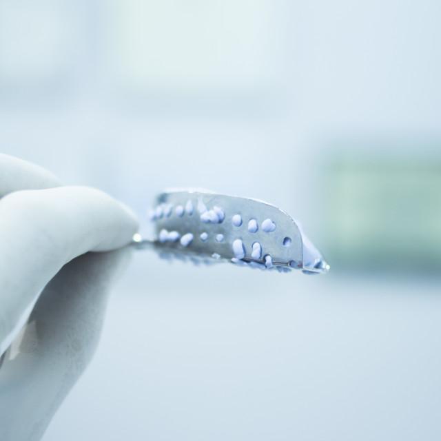 """Dental mold dentists clay teeth gel gum plate cast"" stock image"