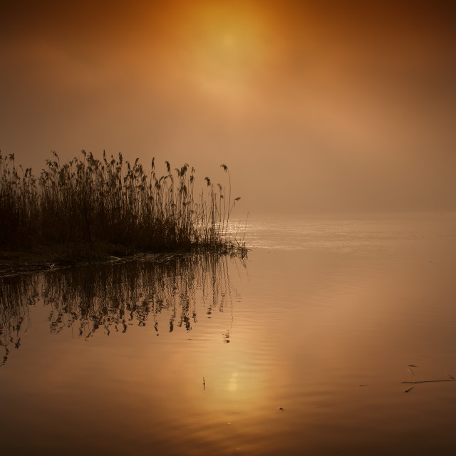 """""""Fabulous,foggy,red sunrise over the river in summer.Horizontal."""" stock image"""
