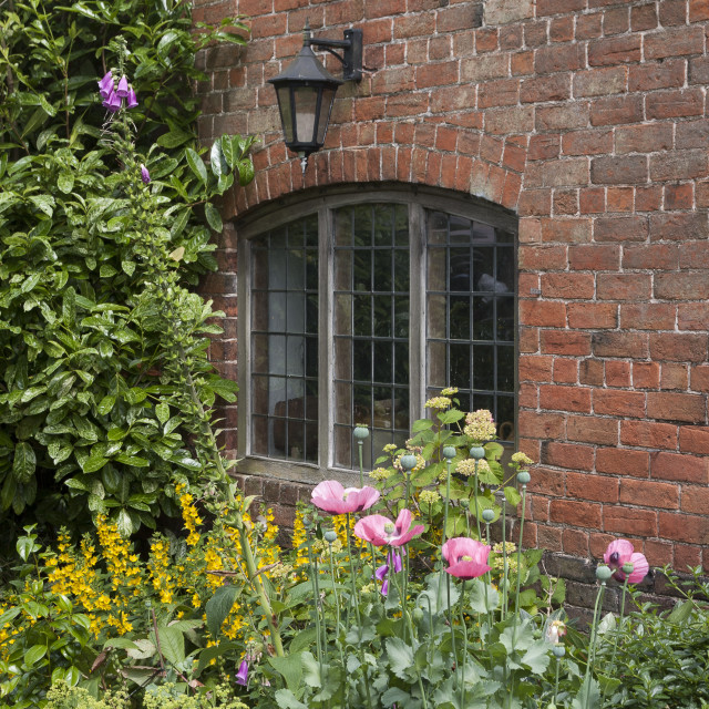 """Old window and flowerbed"" stock image"