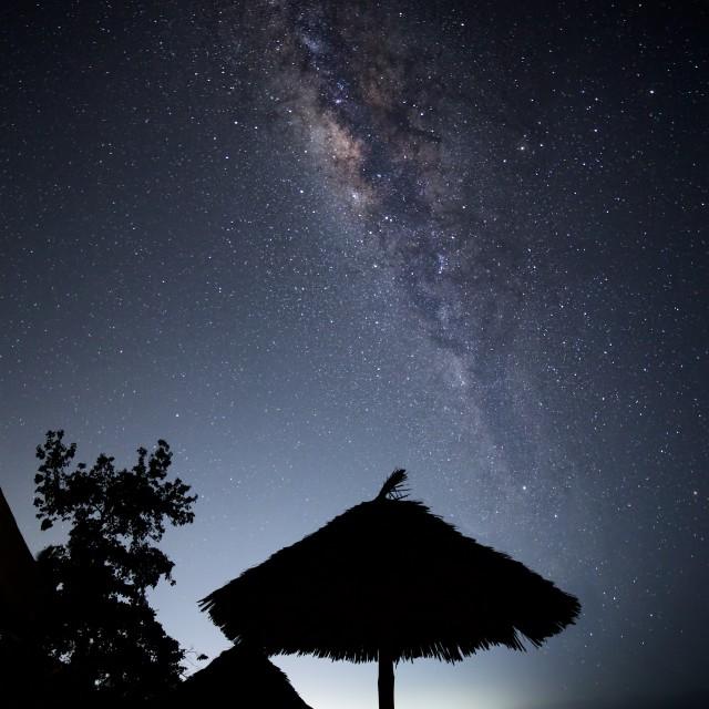 """Zanzibar Milky Way"" stock image"