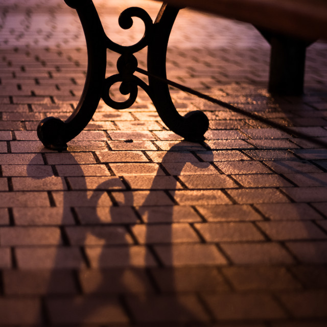 """Well Lit Park Bench"" stock image"
