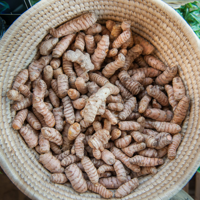 """Basket with heap of turmeric roots"" stock image"