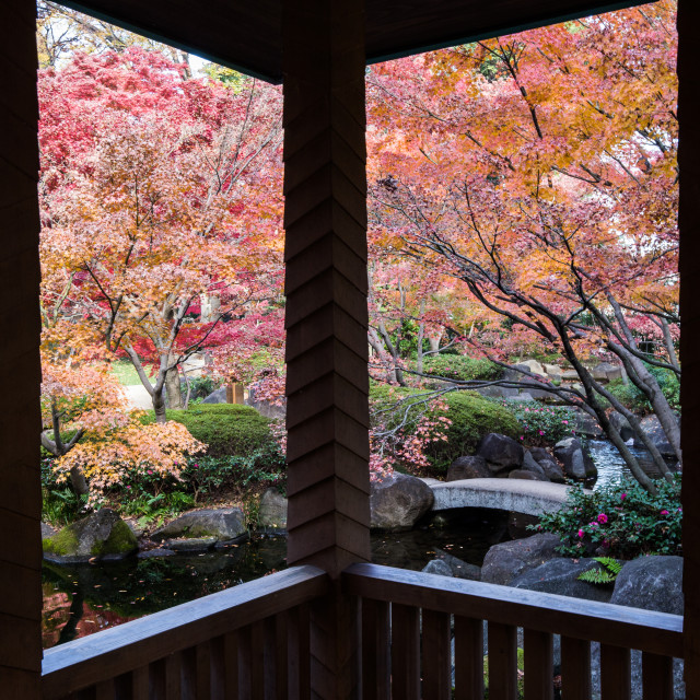"""Otaguro Garden"" stock image"