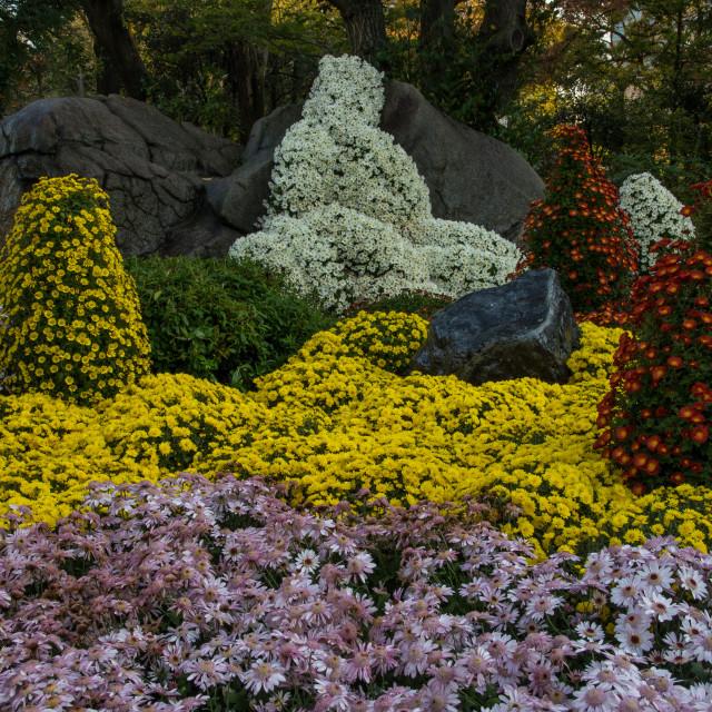 """""""Keitaku Garden Tennoji"""" stock image"""