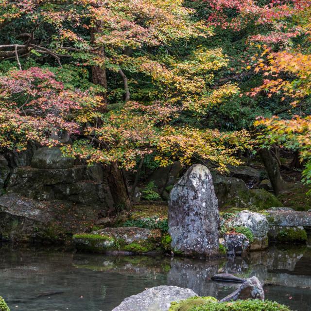 """Renge-ji"" stock image"