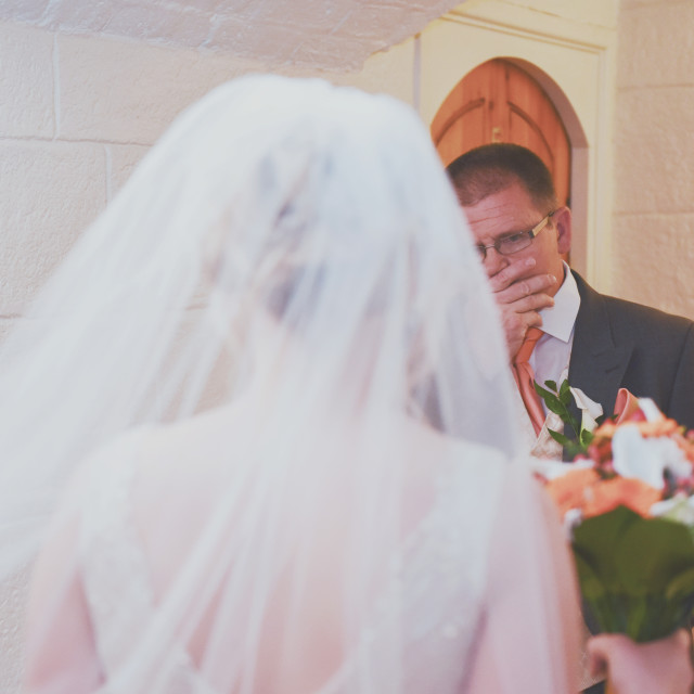 """First Look at the Bride"" stock image"