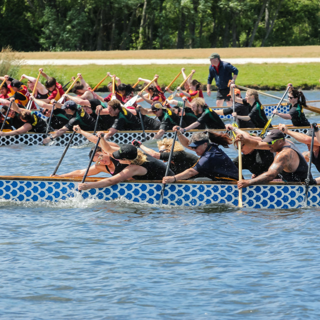 """dragon boat race"" stock image"