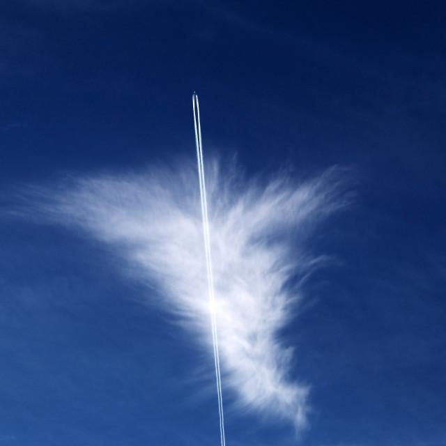 """Sky high."" stock image"