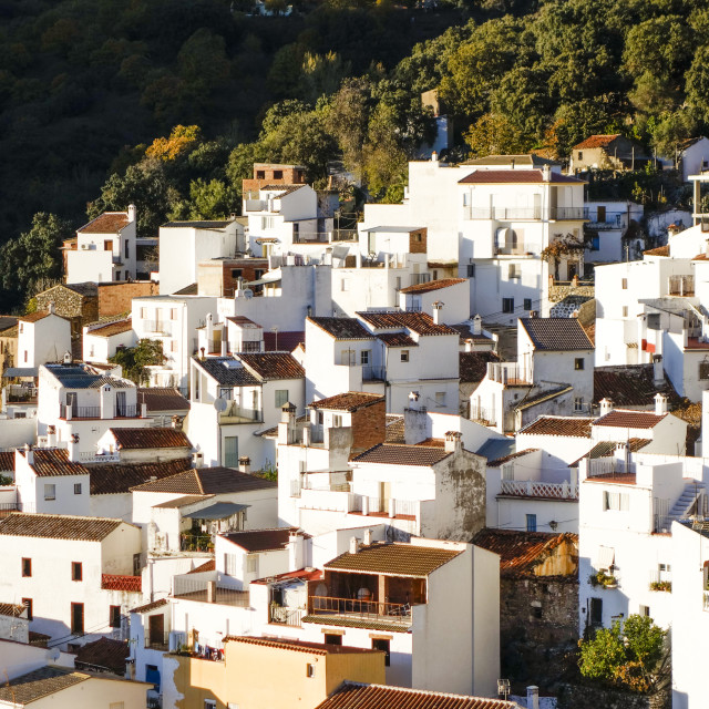 """The village of Igualeja surrounded by chestnut forest Serrania de Ronda, Southern spain."" stock image"