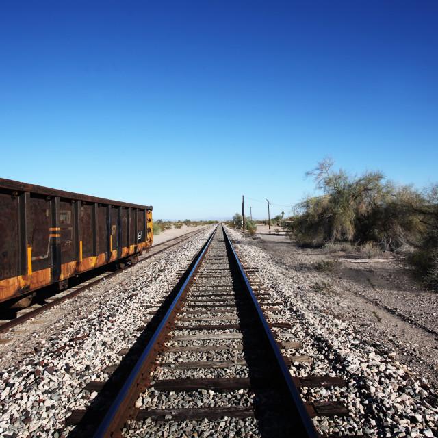 """""""Tracks in the desert"""" stock image"""