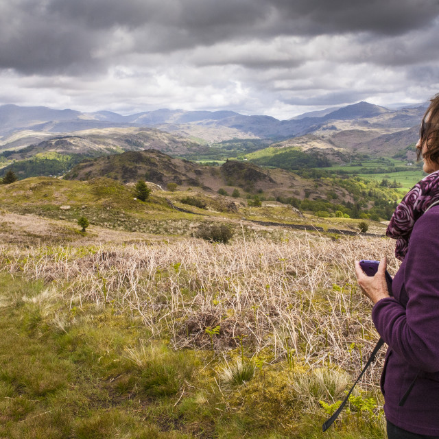 """""""Muncaster Fell, SW Lake District, Northern England"""" stock image"""