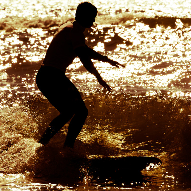 """""""Longboarder surfing at sunset"""" stock image"""