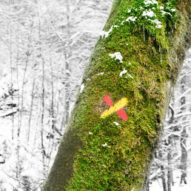 """""""Mountain street art"""" stock image"""