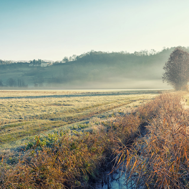 """Low fog in sunday morning"" stock image"
