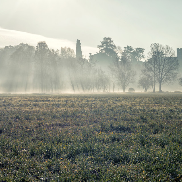 """Low fog"" stock image"