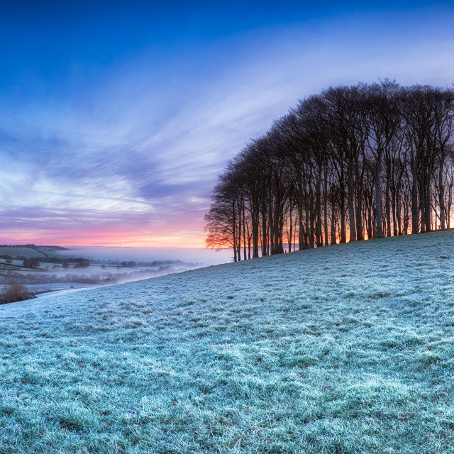 """Frosty English Landscape"" stock image"