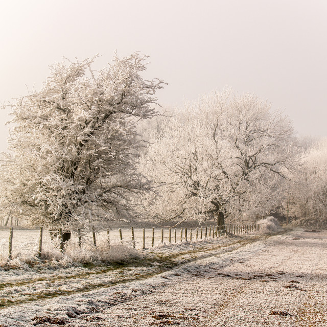 """Frozen countryside landscape"" stock image"