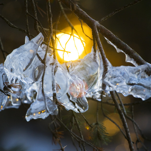 """Sunset through the ice"" stock image"