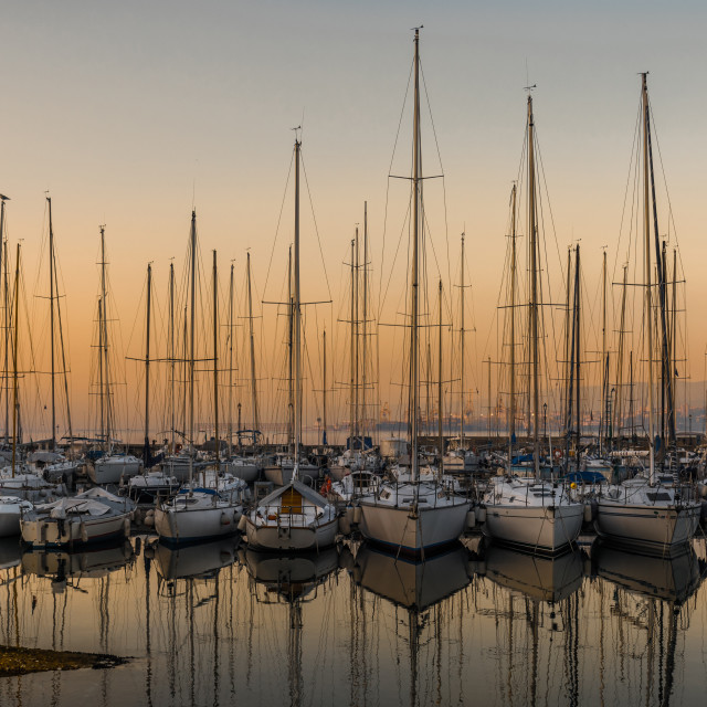 """Sailboats in marina at sunset"" stock image"