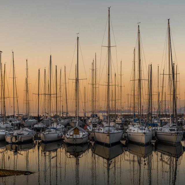 """""""Sailboats in marina at sunset"""" stock image"""