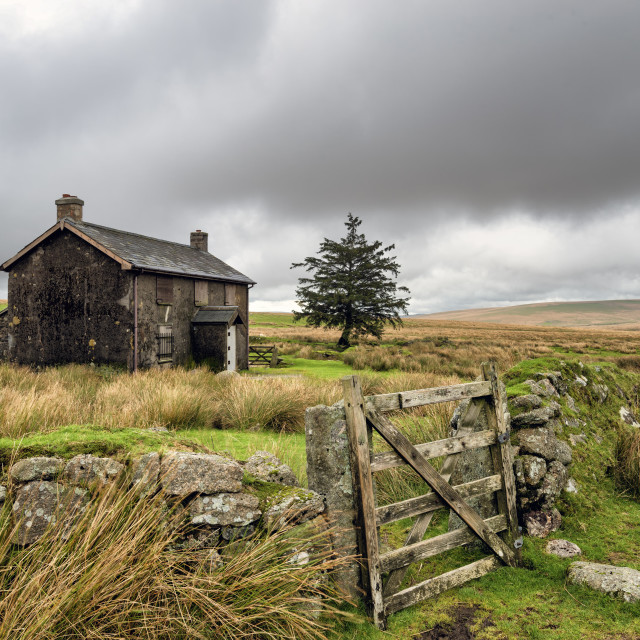 """Abandoned Farmhouse On A Stormy Day in Dartmoor"" stock image"