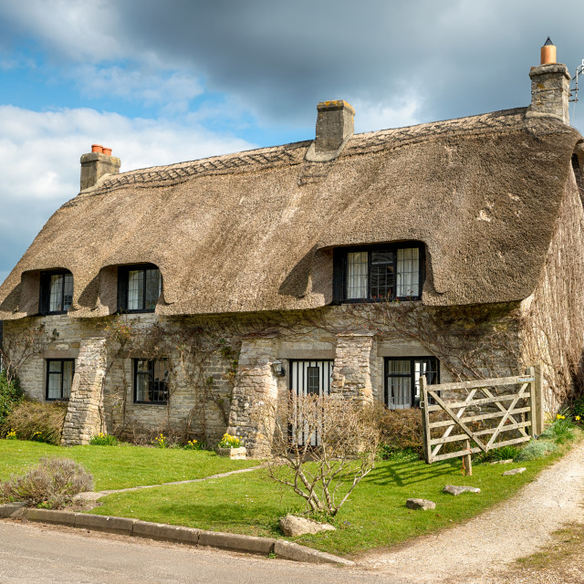 """""""Dorset Thatched Cottage"""" stock image"""