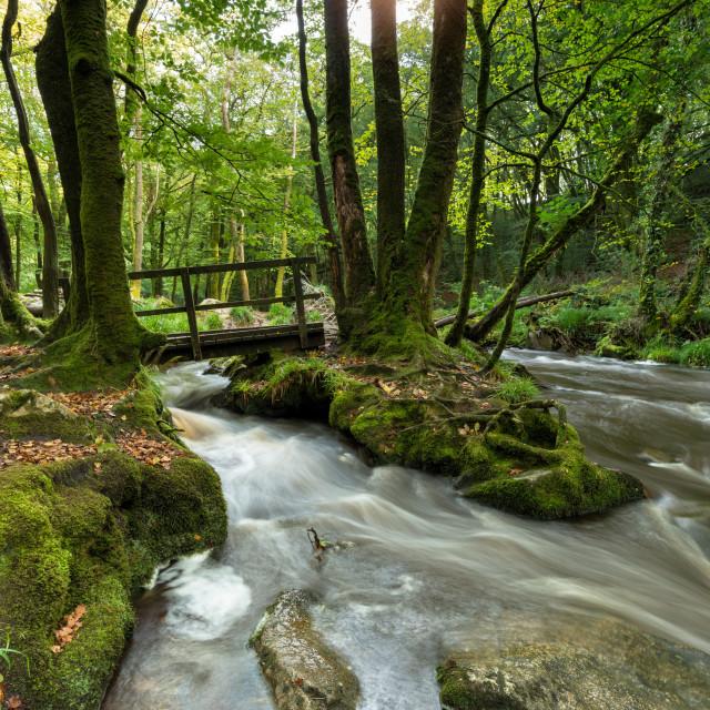 """Golitha Falls on Bodmin Moor"" stock image"