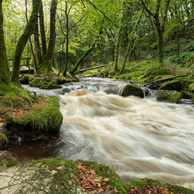 """""""The River Fowey"""" stock image"""