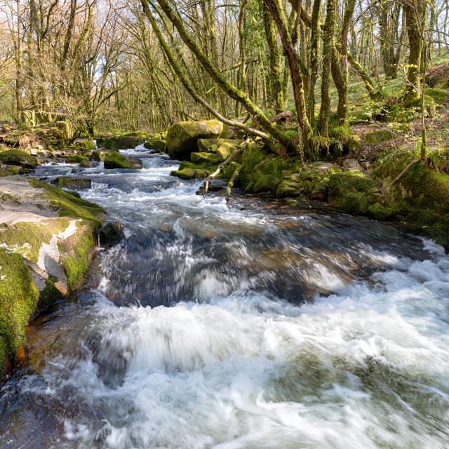 """The River Fowey at Golith Falls"" stock image"
